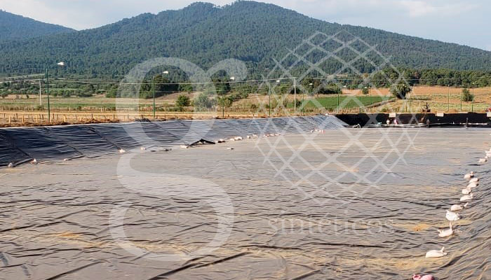 Geosintéticos México, Impermeabilización de aguna de captación de aguas residuales en Michoacán