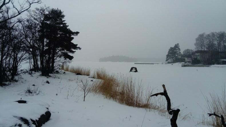 zaśnieżona zatoka Bałtyku w Espoo
