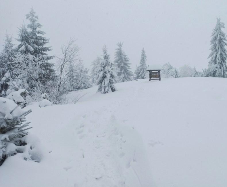 Czoło Turbacza zimą