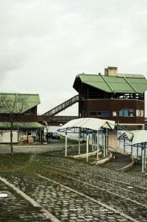 Mitzi-Cross-2017-Donauinsel-01536