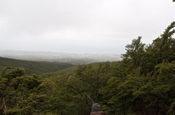 View from the top. Could have been socked in and no view.