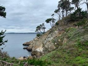 Point Lobos_0518