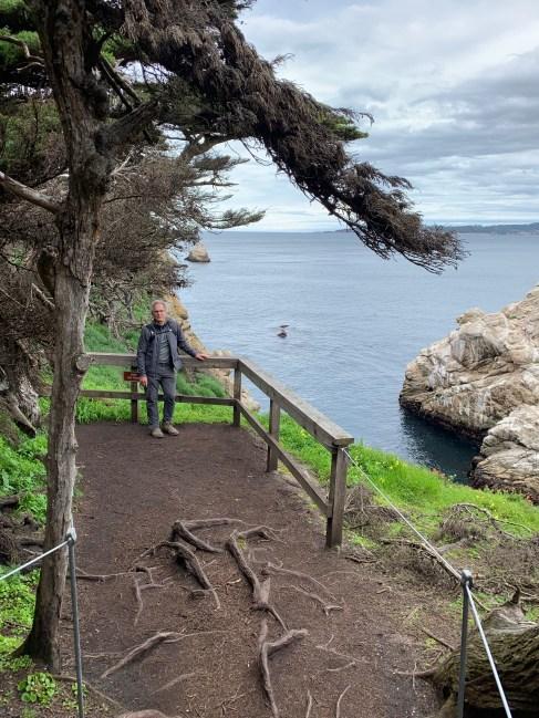 Point Lobos_1187