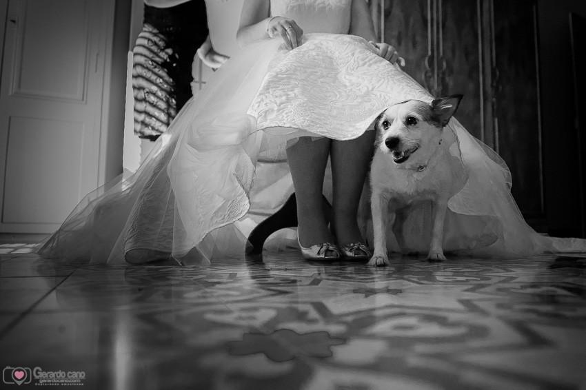 Fotos bodas en el campo - fotógrafos Castellon (33)