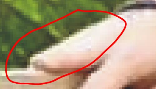 Hingegen sind bei der Hand des jungen Mannes keine verwirbelungen(Fehlpixel zu erkennen