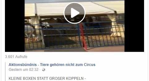 Simon Fischer zeigt großzügige Pferdeboxen Anlage des Circus Krone / Screenshot Facebook Aktionsgruppe Tierrechte Bayern