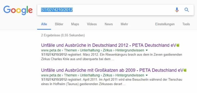 Screenshot Google.de
