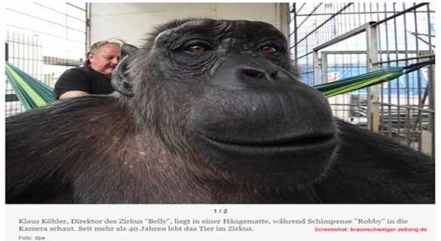 ERFOLG: Robby darf bei seiner Familie bleiben / Scrrenshot: braunschweiger-zeitung.de
