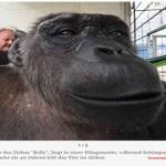 ERFOLG: Robby darf bei seiner Familie bleiben