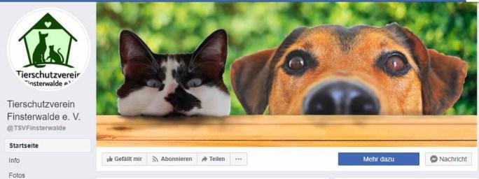 Finsterwalder Tierschutzverein droht mit Rechtsanwalt / Screenshot Facebook