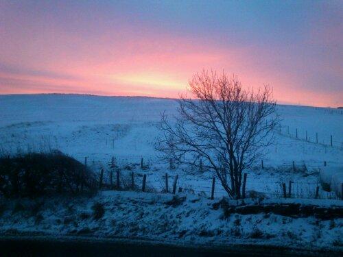 Morning after snow traffic mayhem. Foot still hurts. But sunrise glorious.