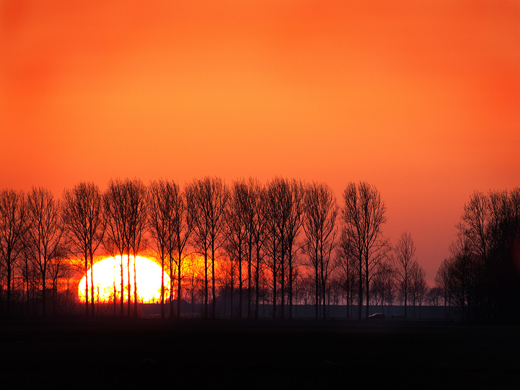 Sunset in the Polder