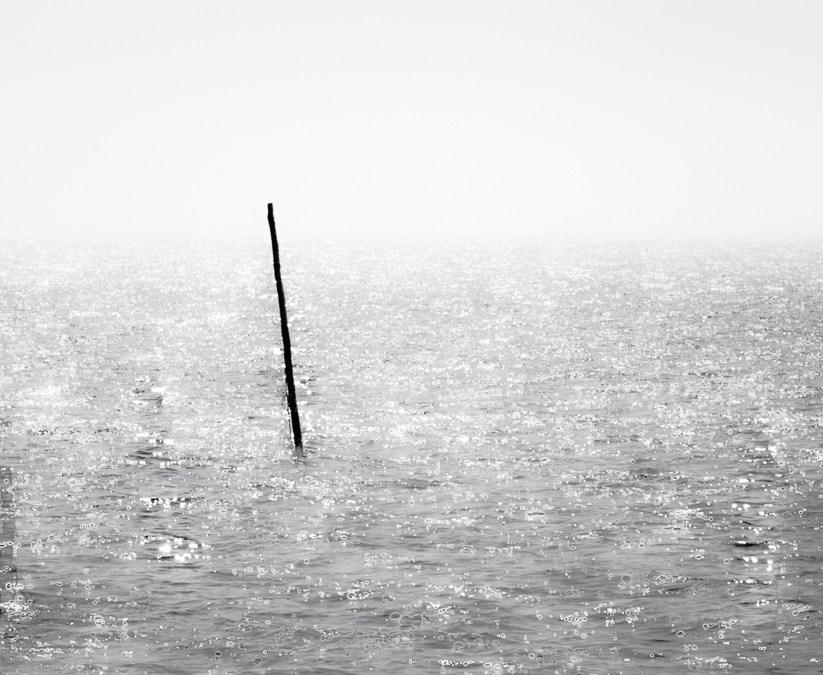 Fishing in the IJsselmeer