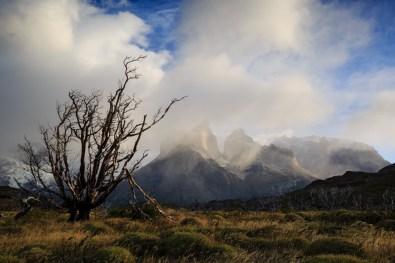 Cuernos im Torres del Paine
