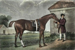 Eclipse the Horse by George Stubbs, Courtesy of Wikipedia