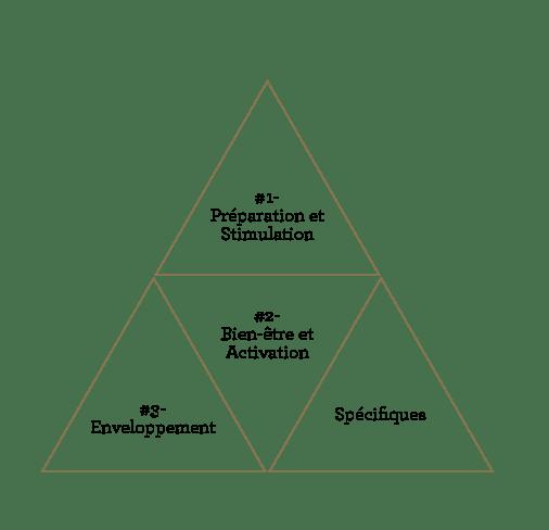 Protocoles Buste et Corps