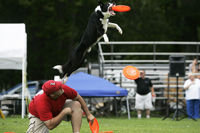 Jeff Duff of Louisville, KY competes in the expert freestyle event with his dog, Jesse, at the Skyhoundz North Central Regional championship in Osborne Park. (C-T photo Max Gersh) ©2010