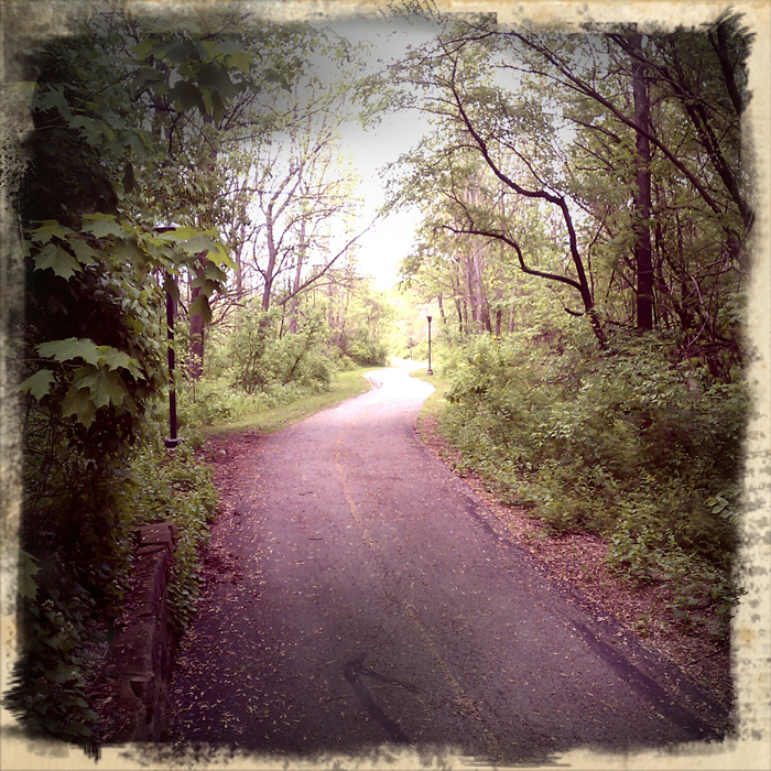 Part of the Rock River Rec Path in Rockford. Shot using Retro Camera on a Droid Incredible. ©2012 Max Gersh