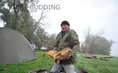 Schubkarper van 1.15 meter en ruim 14 kilo krijgt vrijheid terug van Tino Leffering