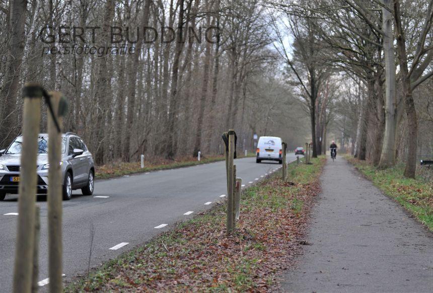 Vandalen vernielen zeven boompjes van tien centimeter doorsnede in Renkum en Wolfheze