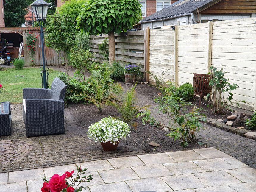 Vakbekwame tuinlieden Evers & Weijman maken van woestenij achter mijn huis een paradijsje