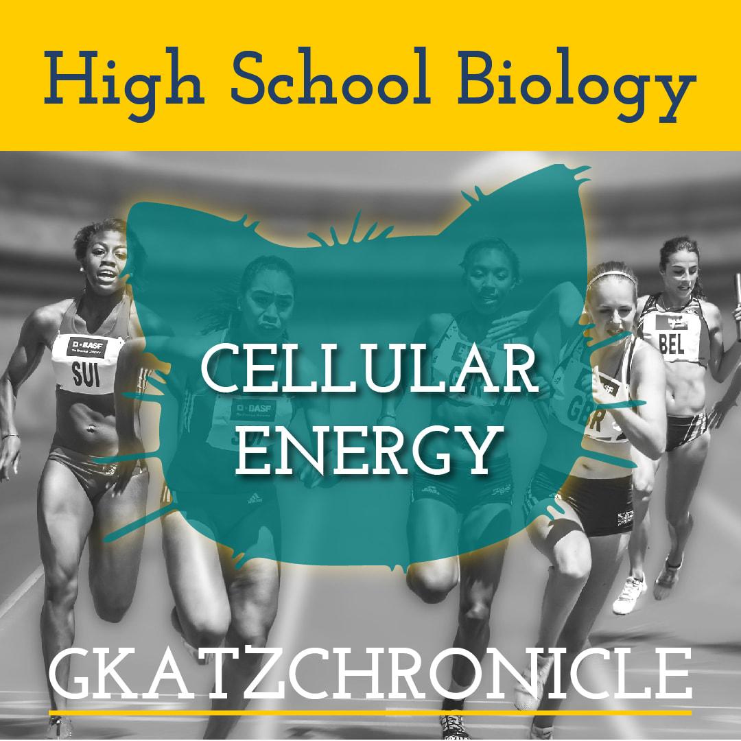 Cellular Energy Unit Test