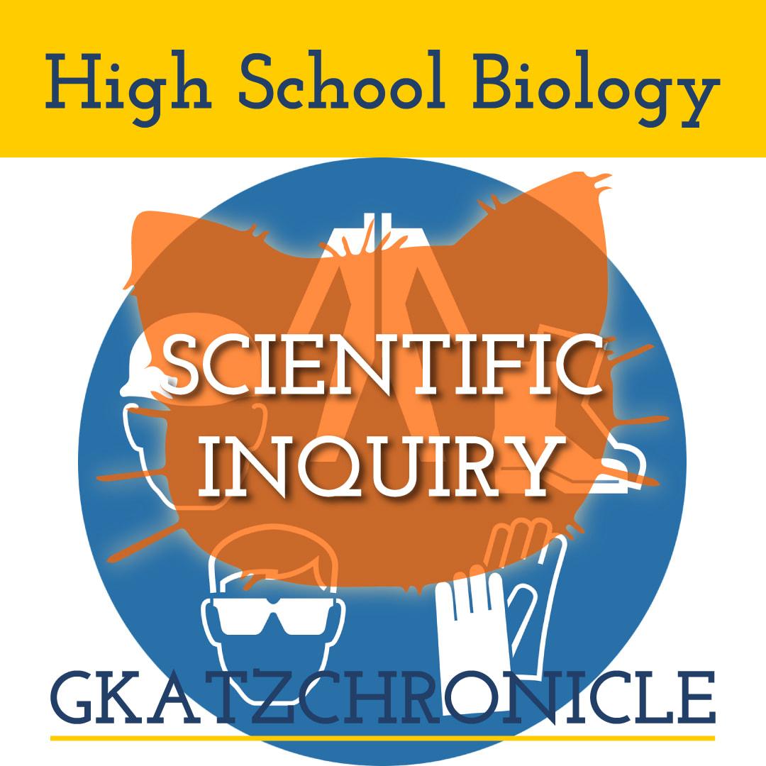 Major Ideas In Biology Video Worksheet