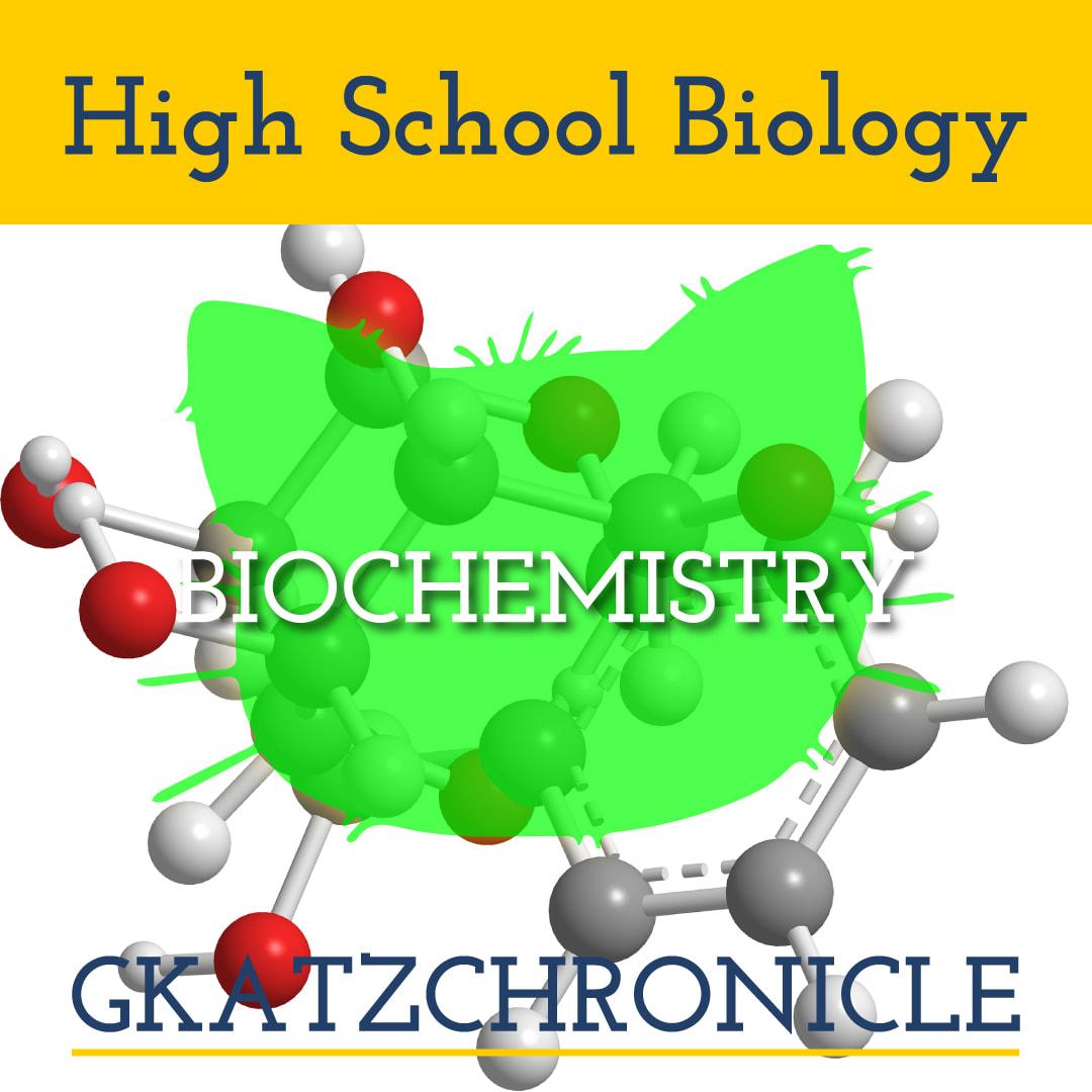 Biochemistry Summary Worksheet