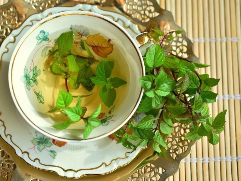 benefits of mint tea