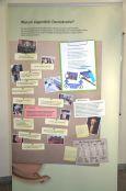 GSP_Ausstellungseroeffnung Demokratie staerken_September 2015 (3)