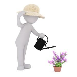 Geschenkideen für den Garten