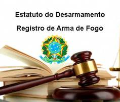 Registro de Arma de Fogo – Estatuto do Desarmamento