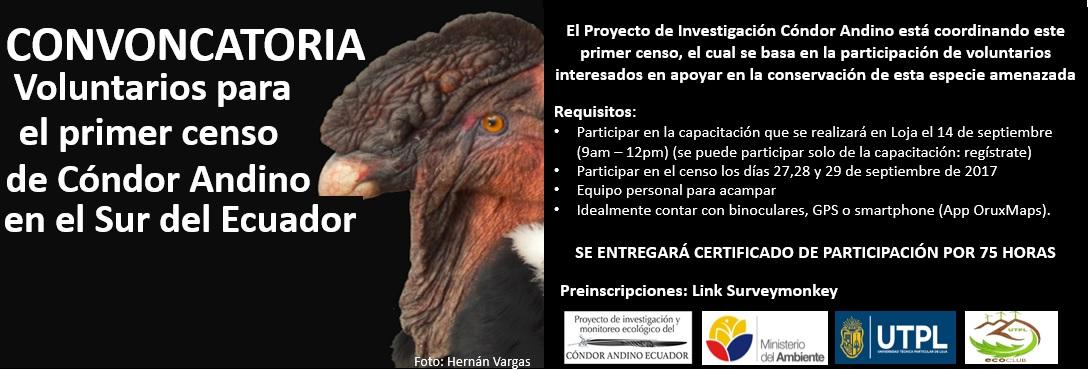 convocatoria-para-voluntarios-primer-censo-del-condor-andino-en-el-sur-del-ecuador