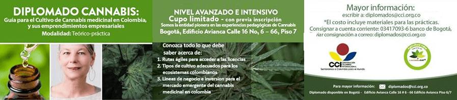 diplomado-para-emprendedores-de-cannabis-medicinal-cci