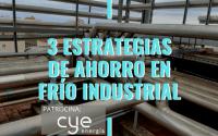 gestordeenergia frio industrial cye
