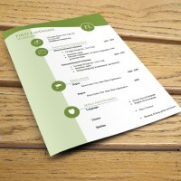 CV resume templates #995 to #1001
