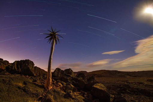 It was full moon in the Namibian Richtersveld, near Noordoewer. Usually I shoot with star trails aimed south, so as to get a full circle in the trails. I have never done an image aimed north and was curious as to what I will get. The shot was done in full moon light, which was the only light present. I took 80 exposures and stacked them using Advanced Stacker Plus in Photoshop. - By Pierre Labuschagne, Somerset West Canon 7D, Sigma 10-20 mm,