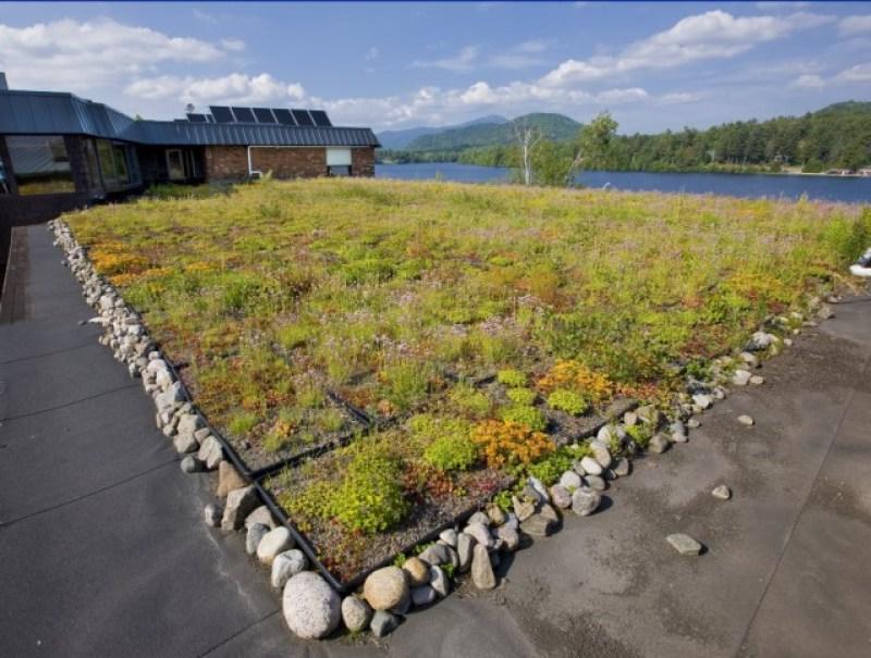 Generations green roof herb garden. Lake Placid, NY #VisitADK #Adirondacks @GetawayMaves