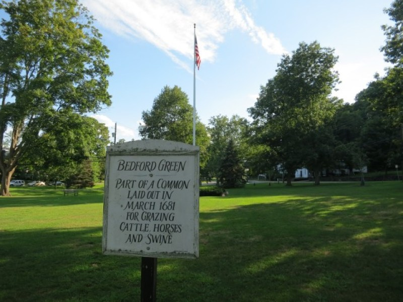 Bedford Common established 1681 for cattle and sheep grazing; Bedford, NY