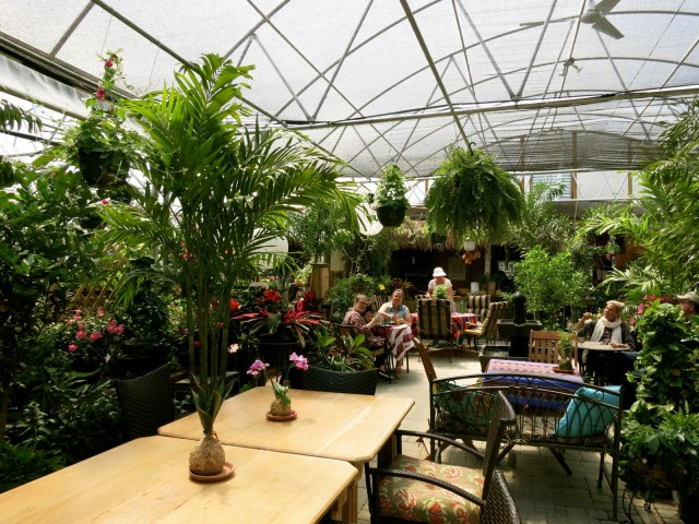Cafe Origins Greenhouse, Cooperstown NY