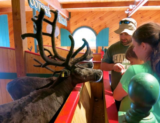 Feeding Reindeer at Santa's Village, Jefferson NH