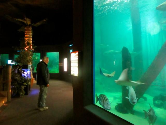 Jenkinsons Aquarium, Point Pleasant NJ