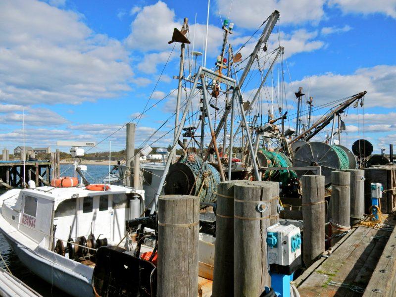 fishing-fleet-montauk-ny