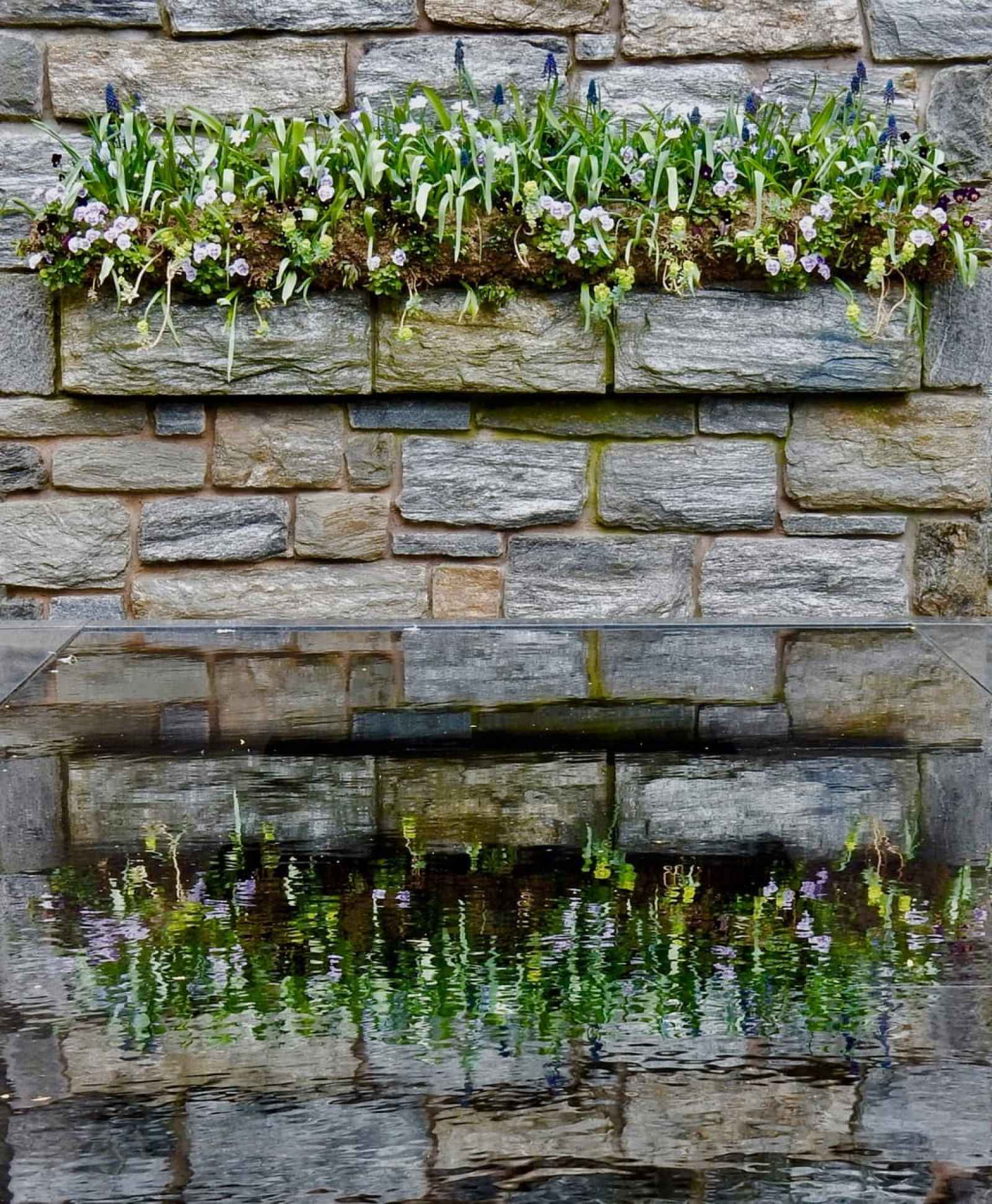 "Reflections in ""The Ruins"" Chanticleer Garden Wayne PA"