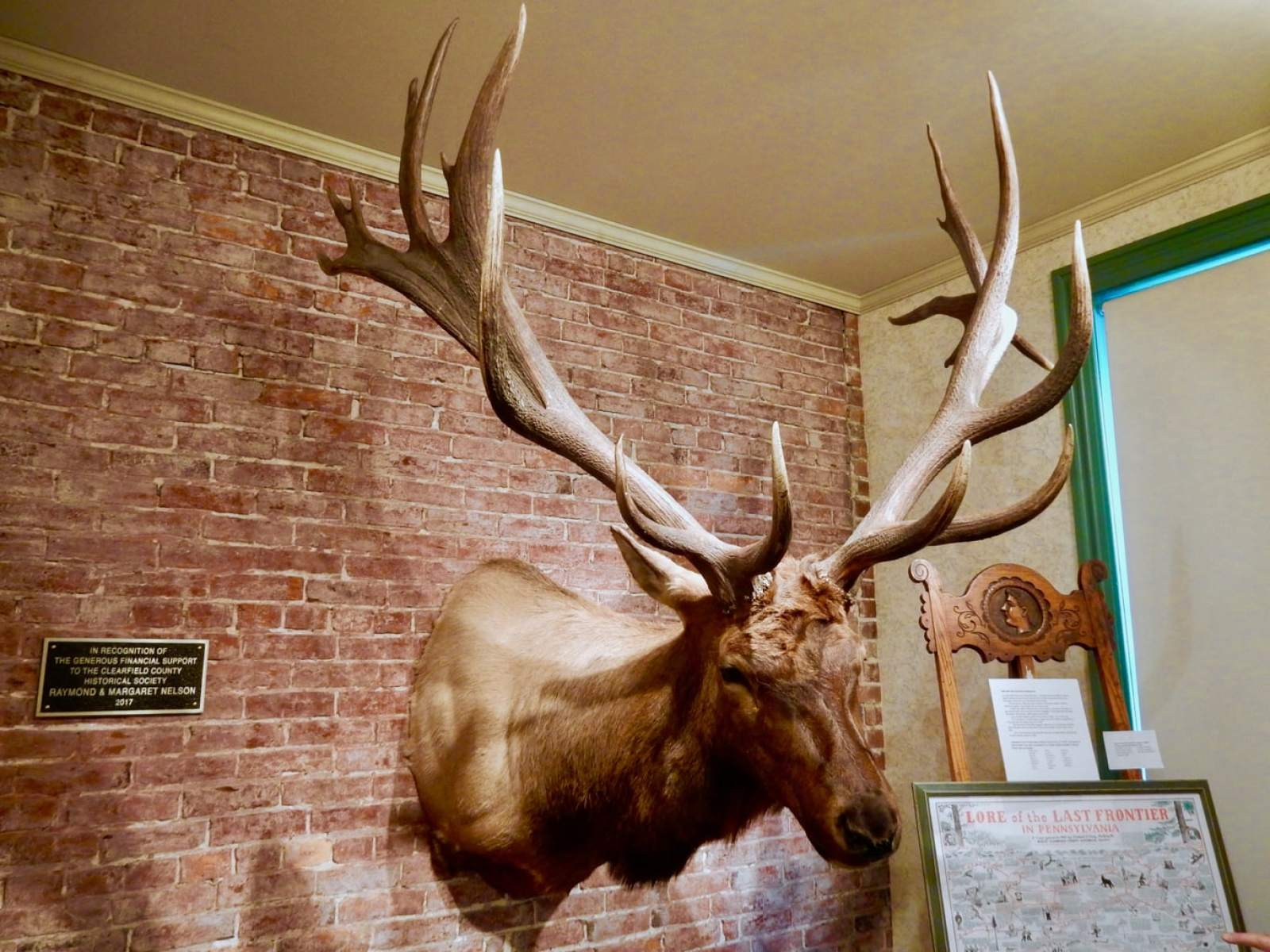 Poached Elk Mount Clearfield County Historical Society PA