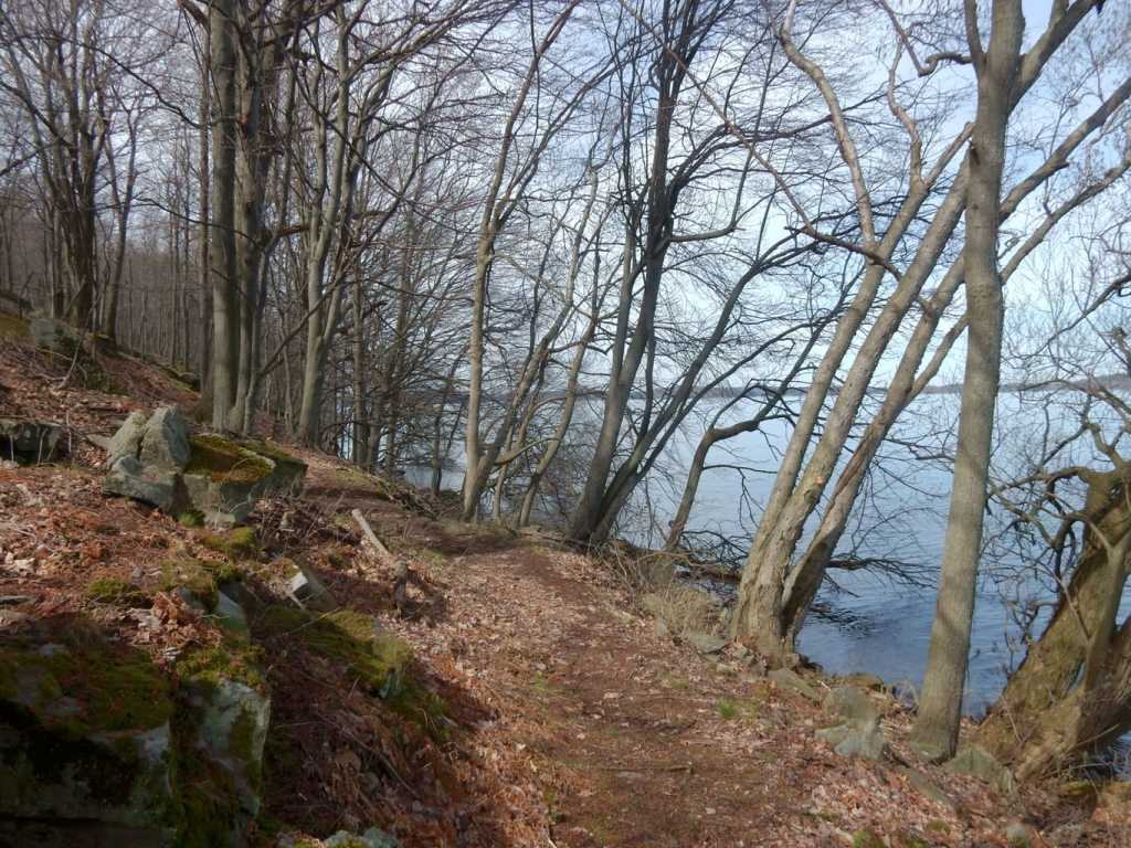 Waterfront Trail Minna Anthony Nature Center Wellesley Island NY