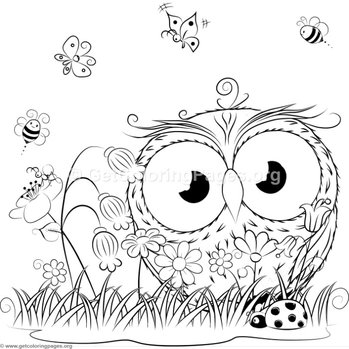Cute Owl 8 Coloring Pages