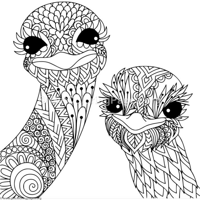 Zentangle Ostrich Coloring Pages
