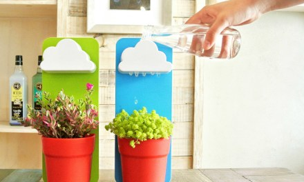 Make Watering Plants Fun With Rainy Pot