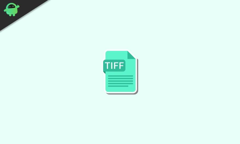 TIFF Dosyası Nedir |  Nasıl Açılır?